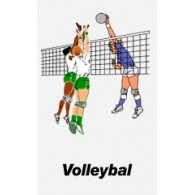 Volleybal